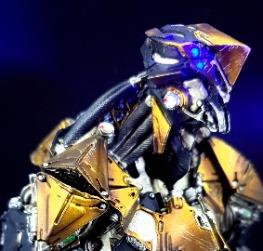 身經百戰的大黃蜂