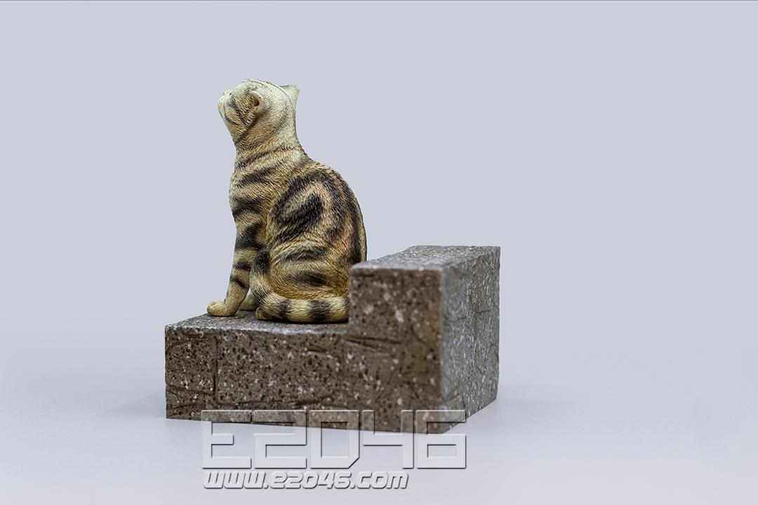 悲伤的棕色斑纹猫 (PVC)