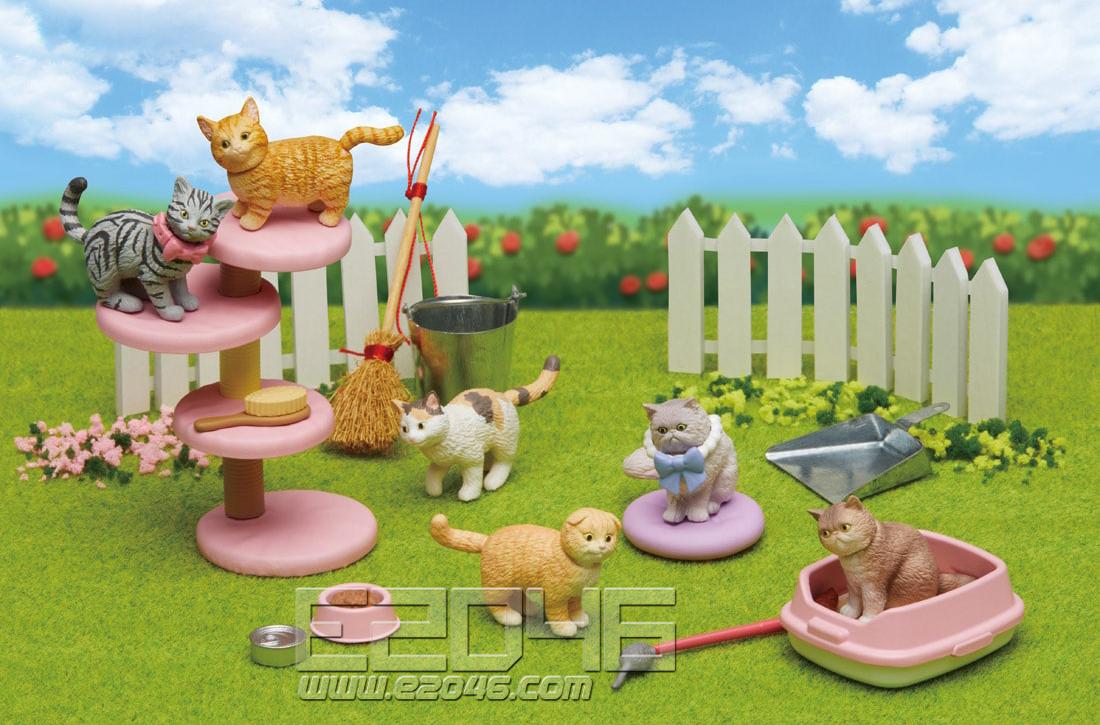 动物伙伴猫