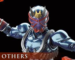 OT2687  Kamen Rider Hibiki