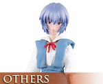 OT0692  RAH499 Ayanami Rei School Uniform Ver.