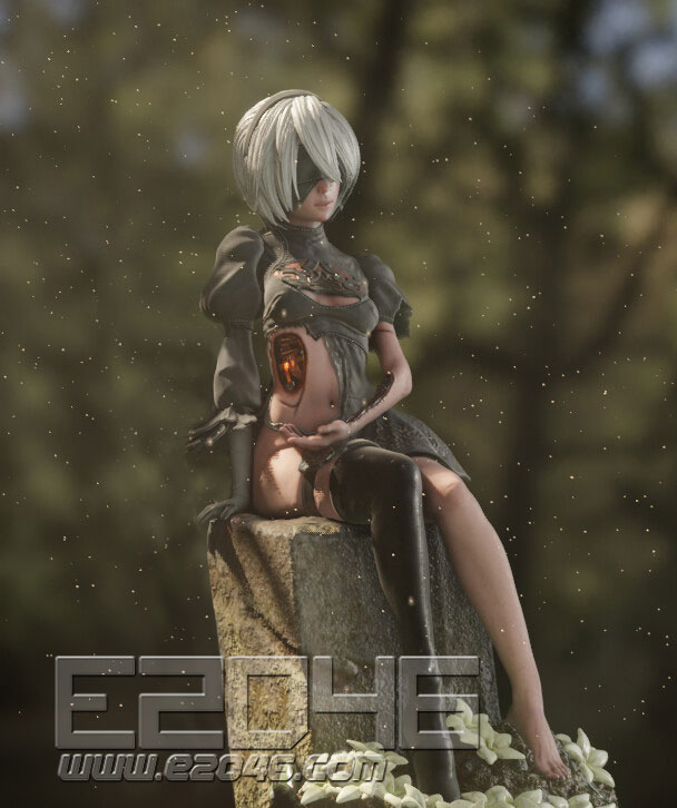 2B & 9S Damaged Version