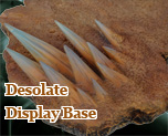 FG7565  Desolate Display Base
