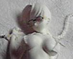 FG5262  Hoshina Tomoko