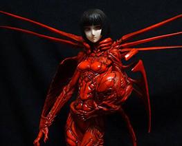 FG8882  红天蛾