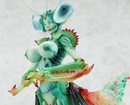 FG12638  螳螂美女