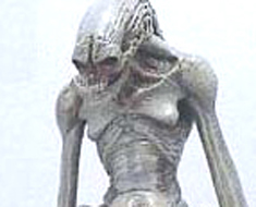 RT0842  Newborn Alien