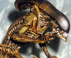 RT1357  Alien