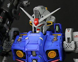 RT3517 1/60 RX-78GP02A Physalis