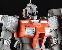 RT3049 1/100 RGM-79N GM Custom