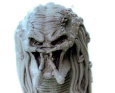 RT1525  Predator Bust