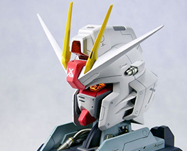 RT1571 1/35 LED Freedom Gundam Bust