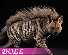 DL4161 1/6 Striped Hyena B (DOLL)