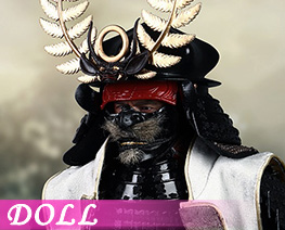 DL4146 1/6 Tokugawa Ieyasu Luxury Version (DOLL)