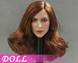 DL1397 1/6 European and American Beauty Head Sculpt B (DOLL)