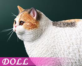 DL4617 1/6 Fat Cat F (DOLL)