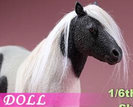 DL2670 1/6 設特蘭矮馬 C (人偶)