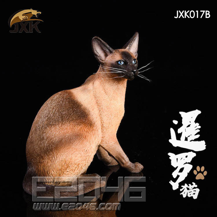 Siamese Cat Squatting B (DOLL)