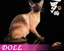 DL2048 1/6 Siamese Cat Squatting B (DOLL)
