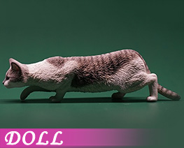 DL4625 1/6 Felis Catus 2.0 D (DOLL)