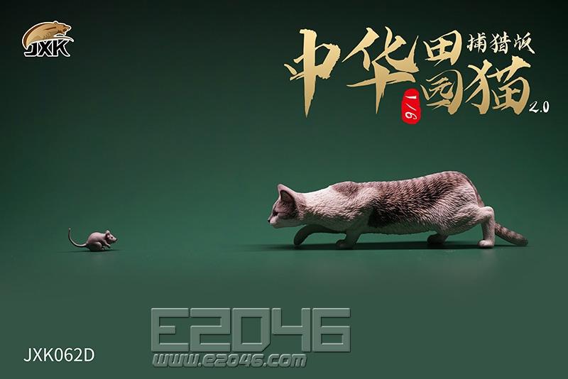Felis Catus 2.0 D (DOLL)