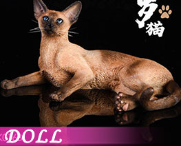 DL2045 1/6 Siamese Cat Lying Posture B (DOLL)