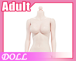 DL0881 1/6 Steel skeleton femalebody white skin color C (Doll)