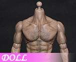 DL0918 1/6 Thick chest wide shoulders male ferritic (Doll)