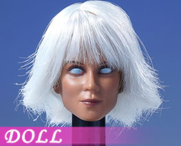 DL2284 1/6 European Model Of Female Head With Hair Transplant B (DOLL)