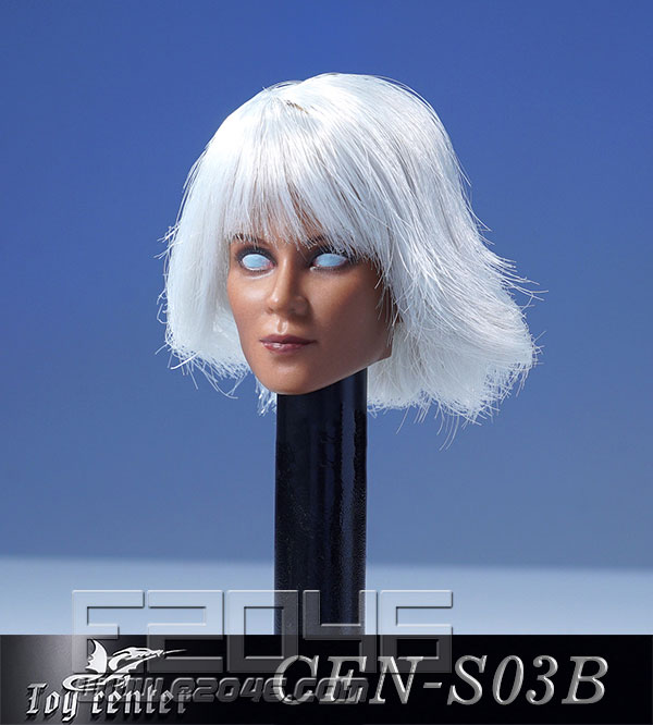 European Model Of Female Head With Hair Transplant B (DOLL)