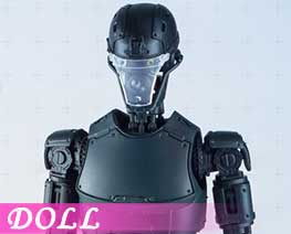 DL1522 1/6 Mechanical humanoid element Black (DOLL)