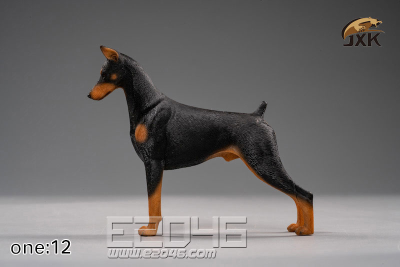 Doberman Pinscher A (DOLL)