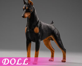 DL2393 1/12 Doberman Pinscher A (DOLL)