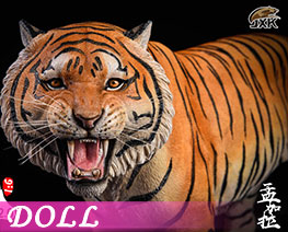 DL2365 1/6 Bengal Tiger 2.0 Roar Edition A (DOLL)