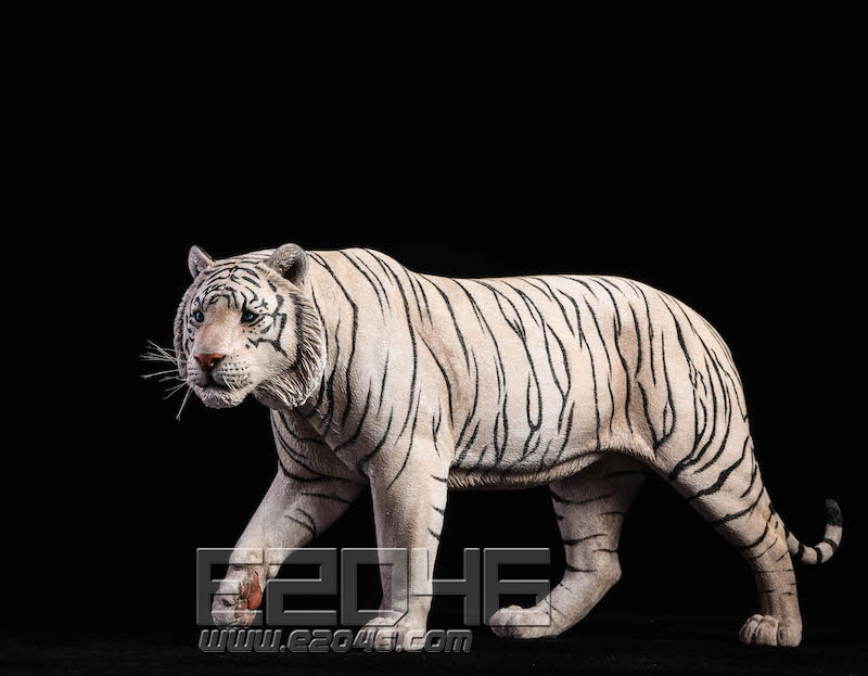White tiger (DOLL)
