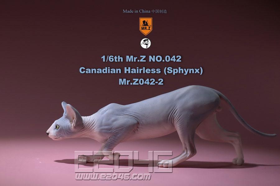 Canadian Hairless Cat B (DOLL)