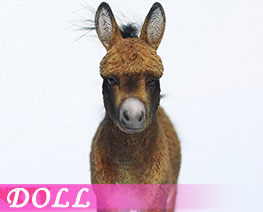 DL3690 1/6 小矮驢 D (人偶)