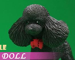 DL4006 1/6 Poodle E (DOLL)