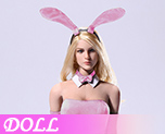 DL1102 1/6 Sexy Waitress Bunny Girl suit D (Doll)