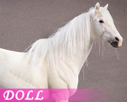 DL1913 1/12 Hanover Warm-blooded Horse A (DOLL)