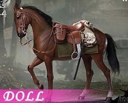 DL4308 1/6 Brown War Horse (DOLL)