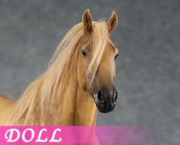 DL4314 1/6 Horse A (DOLL)