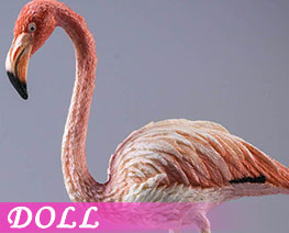 DL3683 1/6 Flamingo C (DOLL)