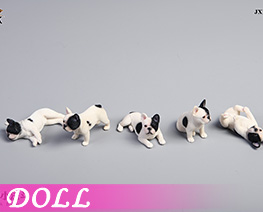 DL4463 1/12 French Bulldog E (DOLL)