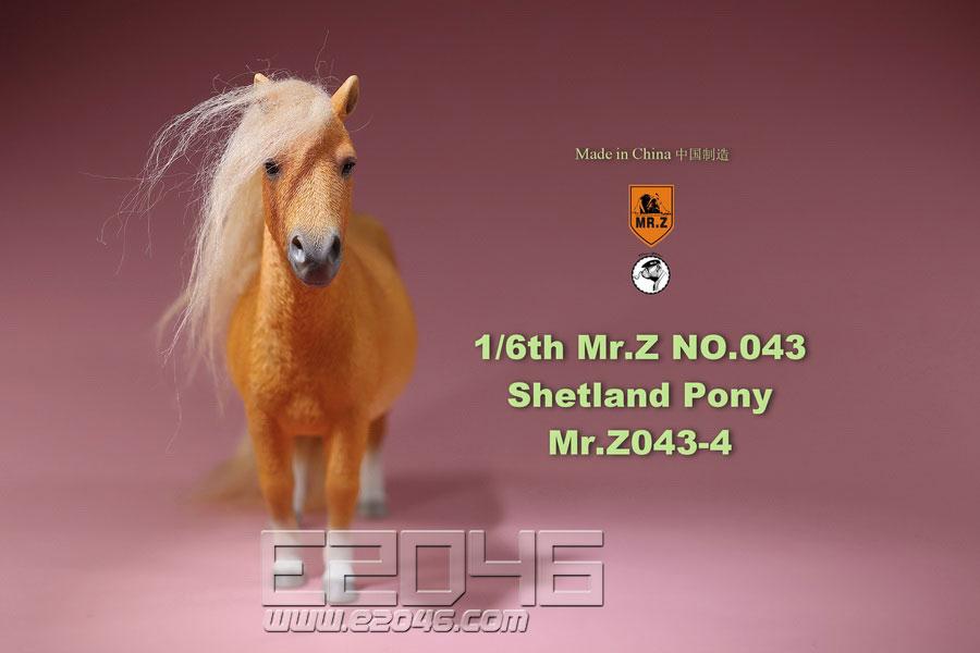 Shetland Pony D (DOLL)