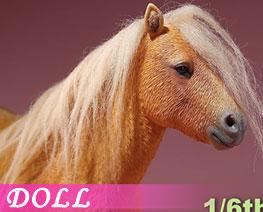 DL2671 1/6 Shetland Pony D (DOLL)