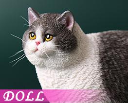 DL4616 1/6 Fat Cat E (DOLL)