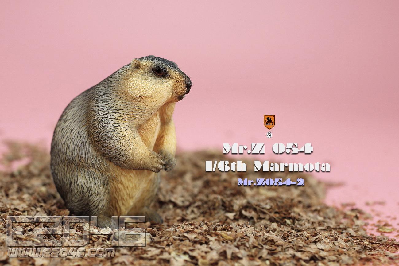Marmota B (DOLL)
