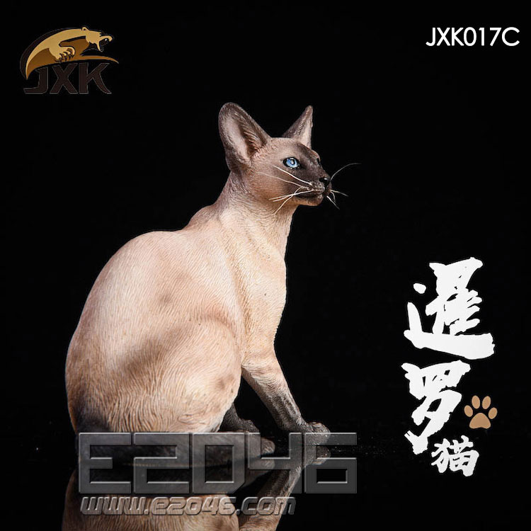 Siamese Cat Squatting C (DOLL)