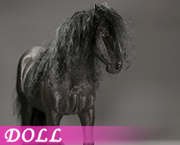 DL4644 1/6 Shire Horse 2.0 E (DOLL)